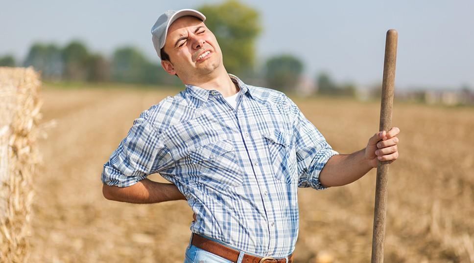 Собираем урожай без травм, боли в спине суставах